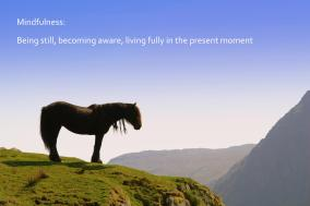 mindfulness_is_being_still__becoming_aware__living_fully_in_the_present_moment
