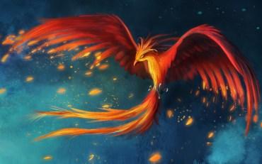 bird-phoenix-flight-art-drawing